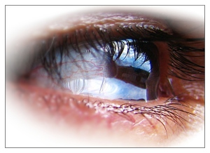 valobashablog_1207042969_1-eyes1